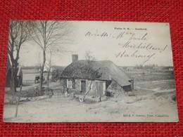 PUTTE  -  Oudheid  -  1911 - Putte