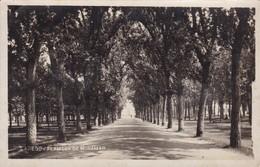 LAREDO. ALAMEDA DE MIRAMAR. CIRCA 1936 - ARGENTINE- BLEUP - Argentine