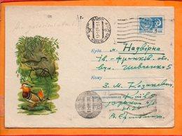 URSS, Entier Postal Sur Enveloppe, Oblitéré, Canard Mandarin - 1923-1991 URSS