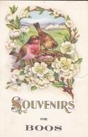 76----RARE---SOUVENIR DE BOOS--(  état Attention Déchirure )--voir 2 Scans - Francia
