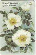 JERSEY ISL.(GPT) - Wild Flowers Of St Quen/Burnet Rose, CN : 40JERA(normal 0), Tirage %20000, Used - United Kingdom