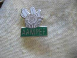 Pin's AAMPEF ( Association Amateurs De Minéralogie Et De Paléontologie De L'Est De La France ). - Associazioni