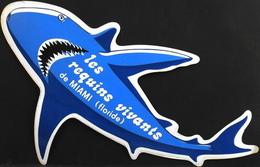 Publicité > Autocollant Pour Les REQUINS VIVANTS De MIAMI (Floride) - TBE - Stickers