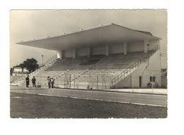 14 BELLUNO - STADIO - ESTADIO – STADION – STADE – STADIUM – CAMPO SPORTIVO - Stadi