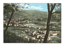 24 LUCCA - CAMAIORE - PANORAMA E CAMPO SPORTIVO - Italia