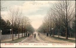Grimbergen - Strombeek : DRIJ PIKKEL : Avenue Vers Meysse - Grimbergen