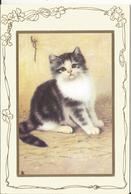 CHAT CAT KATZE ILLUSTRATEUR SHOPSIRE NAIF CP DOUBLE NOEL WEIHNACHTEN - Cats