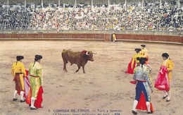 CORRIDA DE TOROS - Toro Y Toreros - Le Taureau Vient De Sortir Du Toril - Corrida