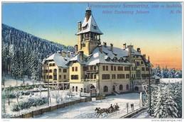 SEMMERING:  WINTERSPORTPLATZ  -  HOTEL  ERZHERZOG  JOHANN  -  KLEINFORMAT  -  SUPER - Hotels & Gaststätten