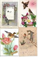 Lot De 20 Cp Representant Des Oiseaux Voir Scan - Cartes Postales