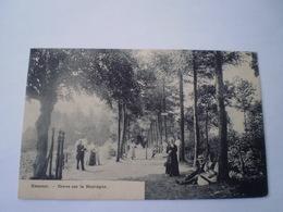 Kemmel // Dreve Sur La Montagne (animee - Zeer Geanimeerd) Gelopen 1912? Zeldzaam Ed. Grossey-Vennin - Other