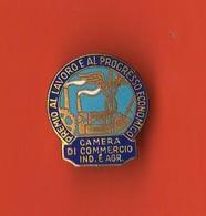 Pin's Johnson Camera Di Commercio Premio Al Lavoro E Al Progresso - Associazioni