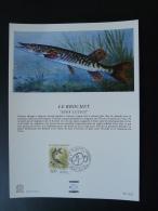Feuillet FDC (16x22 Cm) N° 829 Poisson Brochet Fish 92 Neuilly Sur Seine - Fische
