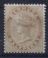 Bermuda 11 * - Bermuda