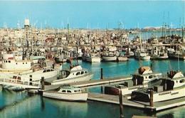 CARTE POSTALE ORIGINALE DE 9CM/14CM : SPORTFISHING BOATS MUNICIPAL YACHT SAN DIEGO BAY   CALIFORNIA  USA - San Diego