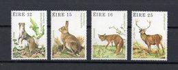 IRLANDA :  Flora E Fauna  -  4 Val.  MNH**  30.07.1980 - 1949-... Repubblica D'Irlanda