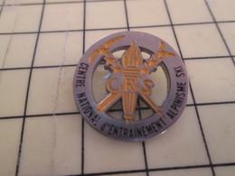 1214d Pin's Pins / Rare Et De Belle Qualité / THEME POLICE : CRS CENTRE D'ENTRAINEMENT AU SKI ET A L'ALPINISME (=vacance - Police
