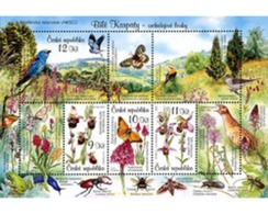 Ref. 206203 * MNH * - CZECH REPUBLIC. 2007. BIOSPHERE RESERVE . RESERVA DE LA BIOSFERA - Orchideeën