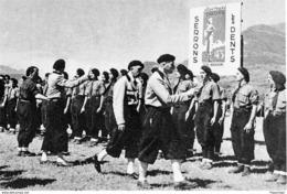 WW2 - Revue Des Chantiers De Jeunesse Par Le Gal De La Porte Du Theil - 1939-45