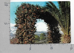 CARTOLINA VG ITALIA - ETNA (CT) - Panorama - 10 X 15 - ANN. 1966 - Catania