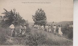 GROUPE DE TRAVAILLEURS RETOURNANT DANS LEUR DEMEURE - Martinique