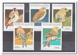 Guinee 1995, Postfris MNH, Birds - Guinee (1958-...)