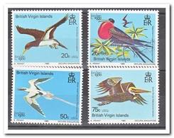 British Virgin Islands 1980, Postfris MNH, Birds - Britse Maagdeneilanden