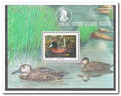 Transkei 1992, Postfris MNH, Birds, Ducks - Transkei