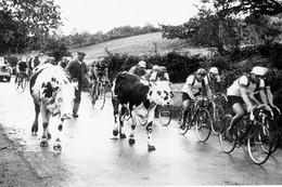 WW2 - Circuit De France En 6 étapes - Départ De Paris Le 28.09.42 - 1939-45