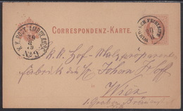 Windisch Feistritz (Slovenjska Bistrica),  Postcard, Mailed 1879, With Railway TPO Cancellation - Covers & Documents