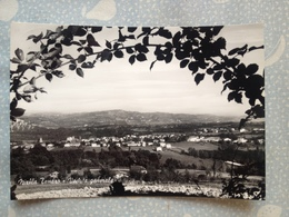 181TO ) Cartolina Di Niella Tanaro - Italie