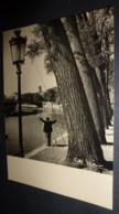 Carte Postale - Albert Monier - Dans Le Calme De L'Ile Saint-Louis (pêcheur) - Monier