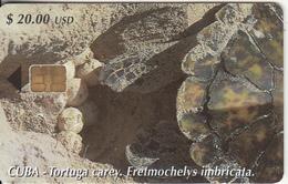 CUBA - Tortuga Carey, Tirage 30000, 06/02, Used - Cuba