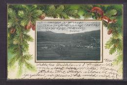CPA SUISSE - BALSTHAL - Très Jolie Vue Générale - TB PLAN Photographie Entourée De Plantes CP Voyagée 1902 Gauffrée - SO Soleure