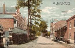 Trois-Ponts - Route De Vielsam (animée, Colorisée, Photo Belge Lumière) - Trois-Ponts