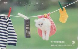 Télécarte Japon / 290-16793 - ANIMAL - CHAT - CAT Japan Phonecard  - KATZE - 4533 - Gatos