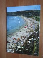 Telgruc. La Plage De Trez Bellec. Iris Jos V.1382 Postmarked 1984. - Autres Communes
