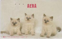 Télécarte Ancienne Japon / 110-011 - ANIMAL - CHAT Chats - CAT Cats Japan Phonecard  - KATZE - 4542 - Gatos