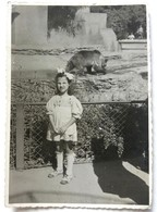 №16   Photography Of Girl In Zoo, Girl In Front Of The Bear - Old FOTO PHOTO - Anonymous Persons