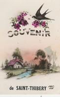 CPA 34 SAINT-THIBERY  SOUVENIR FANTAISIE - France