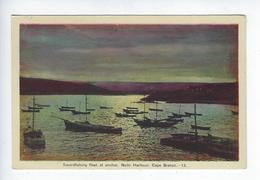 CPA Peco Ottawa Swordfishing Fleet At Anchor Neils Harbour Cape Breton Nova Scotia - Cape Breton