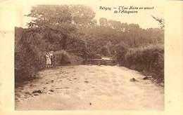Petigny - L'Eau Noire En Amont De L'Adugeoire (animée, Edit. Lemaire-Jernaux) - Couvin