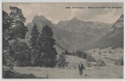 Grimmialp - Blick Vom Hotel In's Senggital - Animee - Photo: Wehrli - BE Berne