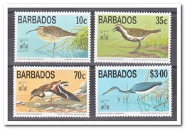 Barbados 1994, Postfris MNH, Birds - Barbados (1966-...)
