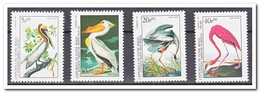 Guinea-Bissau 1985, Postfris MNH, Birds - Guinea-Bissau