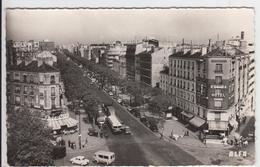 1 Cpsm Boulogne - Boulogne Billancourt