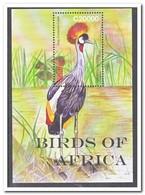 Ghana 2007, Postfris MNH, Birds - Ghana (1957-...)