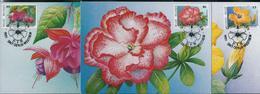 Fleurs Buzin: Floralies Gantoises: CM Des N° 2589/91  Obl. Sint-Denijs- Westrem 21/04/95 - 1985-.. Oiseaux (Buzin)