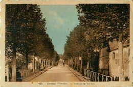 Cpa AIZENAY 85 Avenue De Verdun - Aizenay