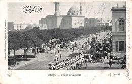 ¤¤  -  EGYPTE   -  LE CAIRE   -  Envoi Du Mahmal    -  CAIRO    -  ¤¤ - Cairo